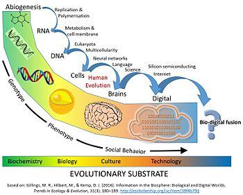Major_Evolutionary_Transitions_digital