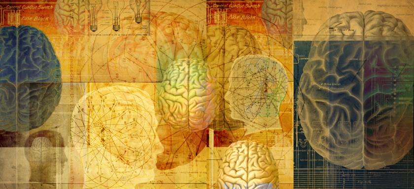 MindBrainBook