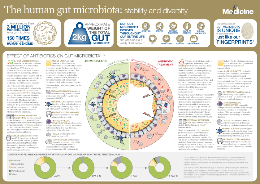 Human gut microbiota