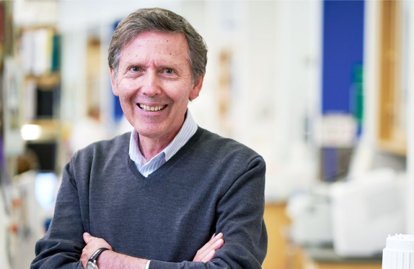 Tomorrow edition interview with developmental neurobiology expert interview with developmental neurobiology expert prof arnold kriegstein malvernweather Image collections